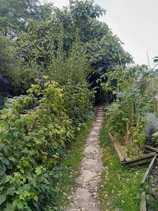 1 6 78 3 jardin3 78 rgl