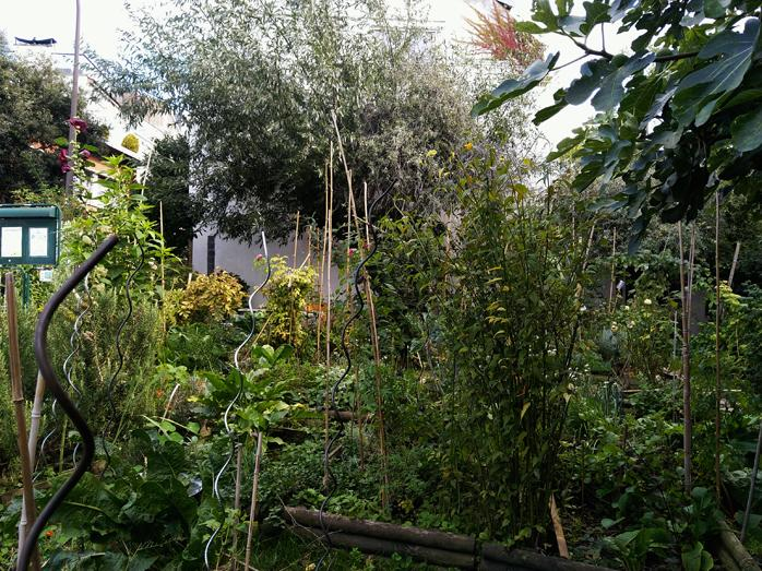 1 8 78 5 jardin 5 78 rgl