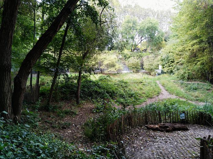 6 le jardin naturel