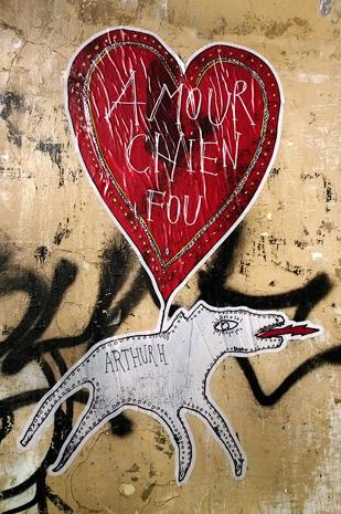 Amour chien fou