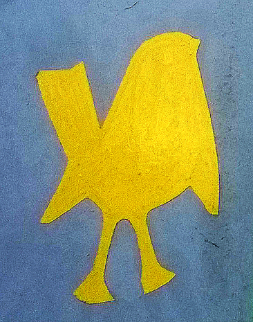 Birdg2