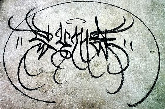 Calix 1