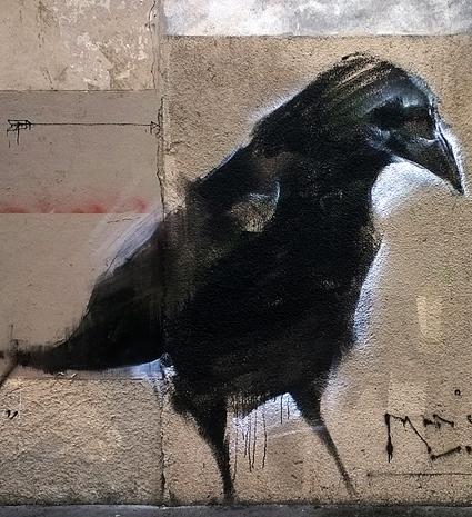 Corbeau1 1