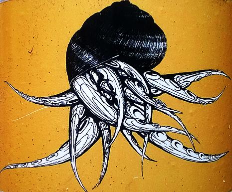 Drole d escargot 1