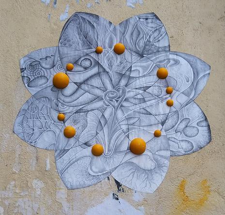 Fleur boul orang