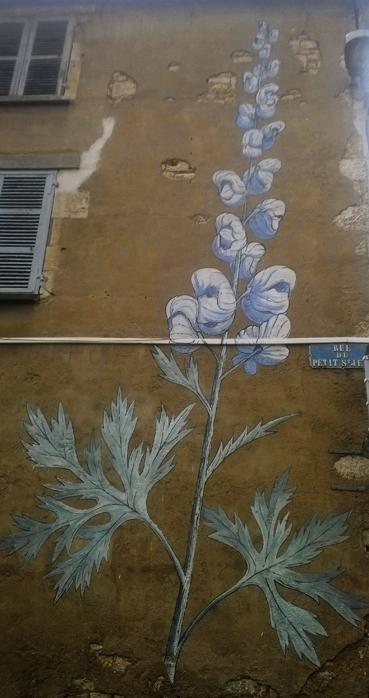Fleurs facade
