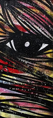 Oeil noir 1