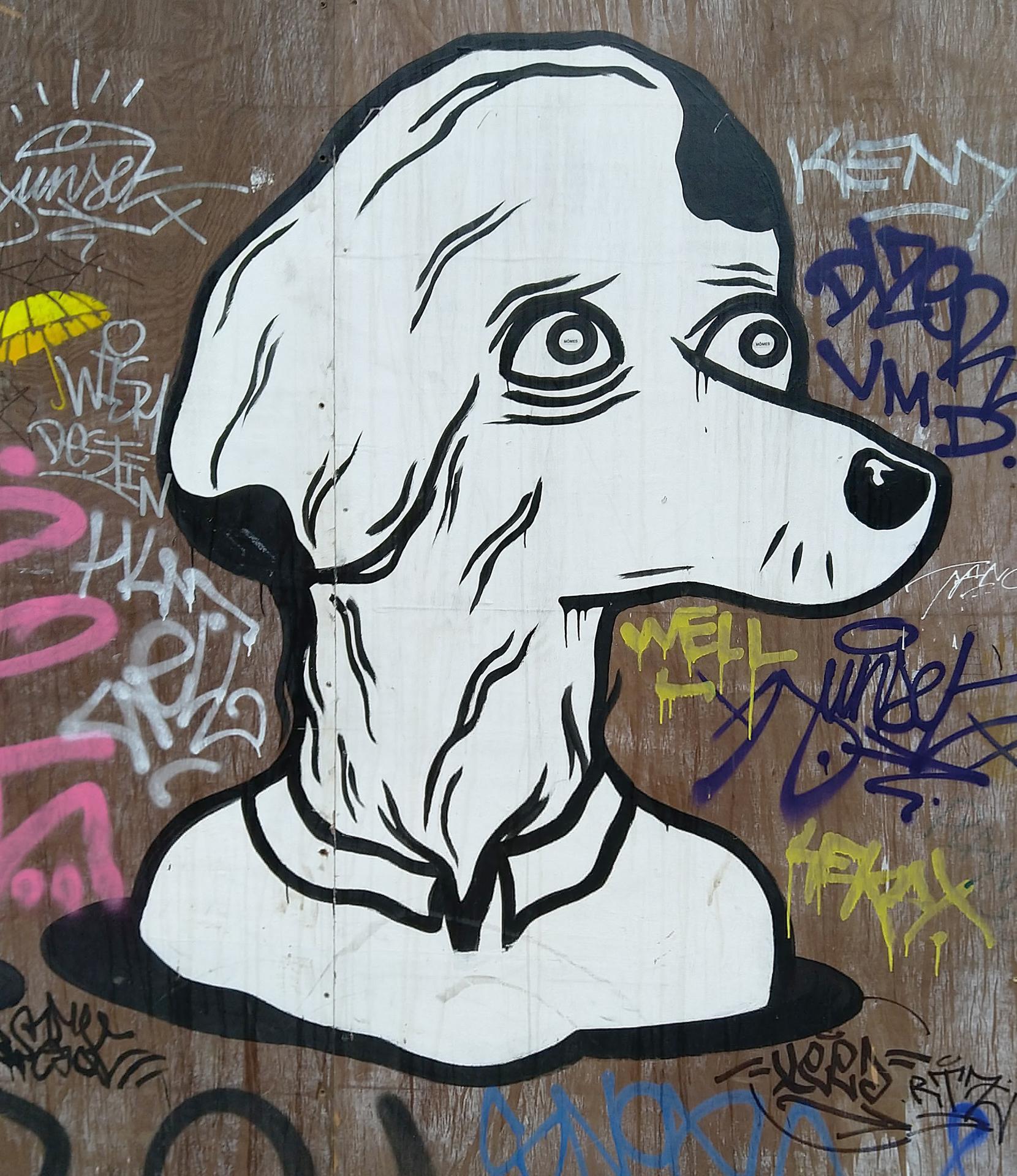 Tete blanche chien
